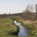 Bakel - Tussen Bakel en Milheeze stroomt de Esperloop langs de golfbaan
