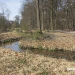 De Rips - In de Stippelberg is een nieuwe natuurlijke beek gegraven waarmee water wordt aangevoerd uit de Maas waarmee Gemertse beken worden gevuld.