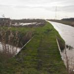 Gemert - De Rips komt uit in de Kleine Walgraaf de grensbeek met Laarbeek