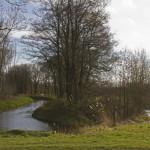 Gemert - De Snelle Loop is een dubbele loop met een houtwal in het midden als grensbeek met Laarbeek