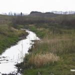 Milheeze - De Snelle Loop gaat meanderend langs de golfbaan tussen Milheeze en Bakel 2